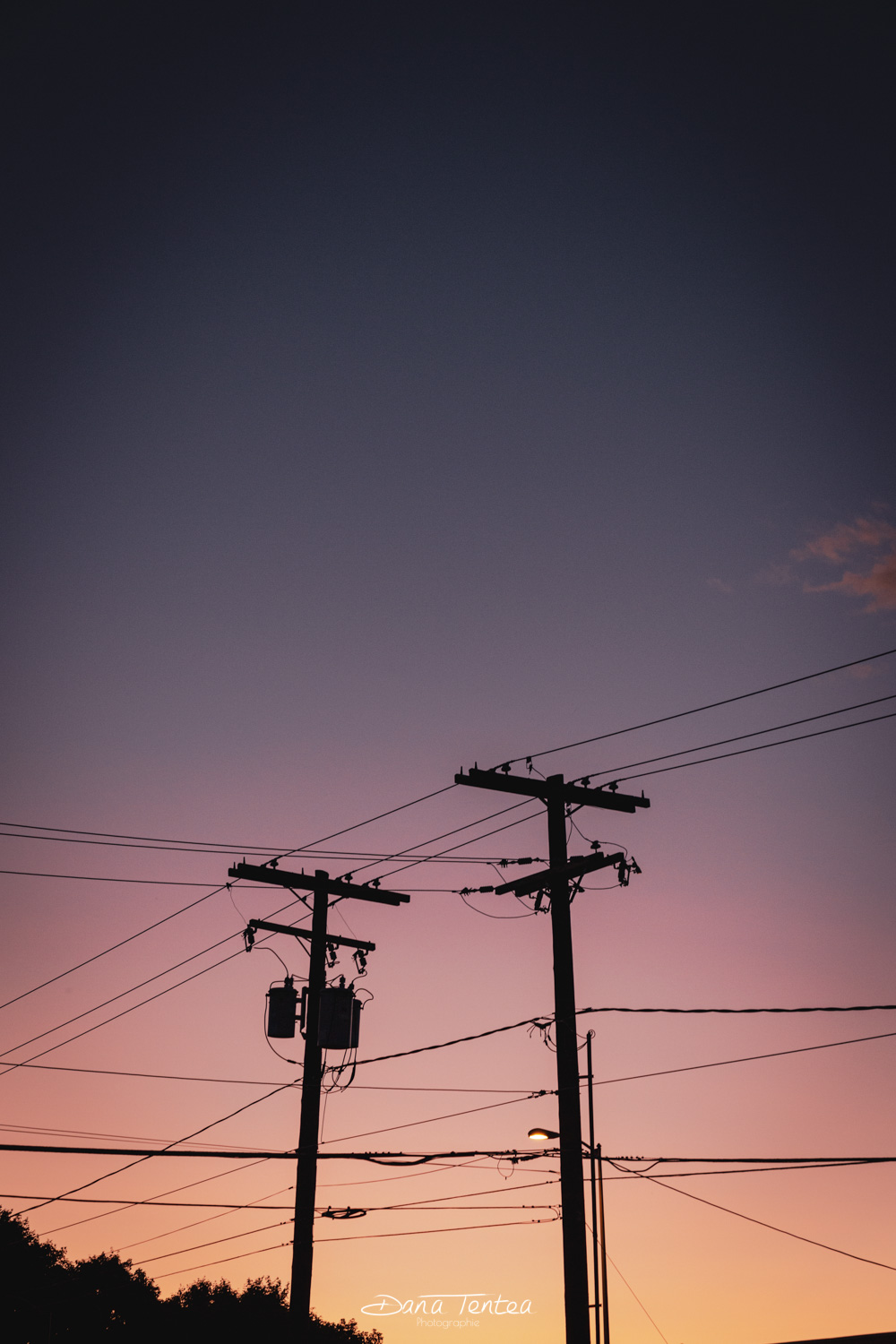 Pink electric